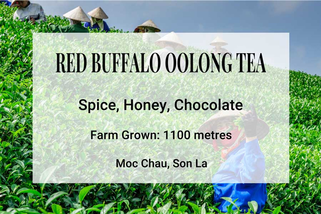Red Buffalo Oolong Tea