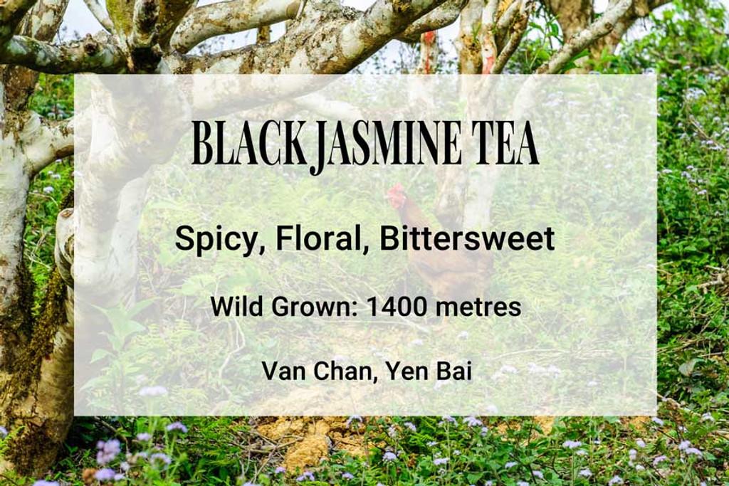 Black Jasmine Tea