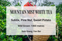 Mountain Mist Tea