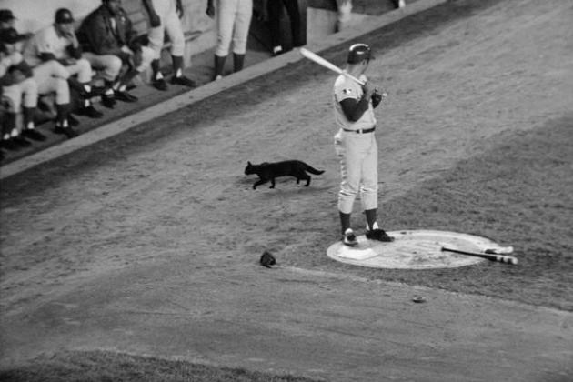 The Craziest Superstitions of Baseball Players