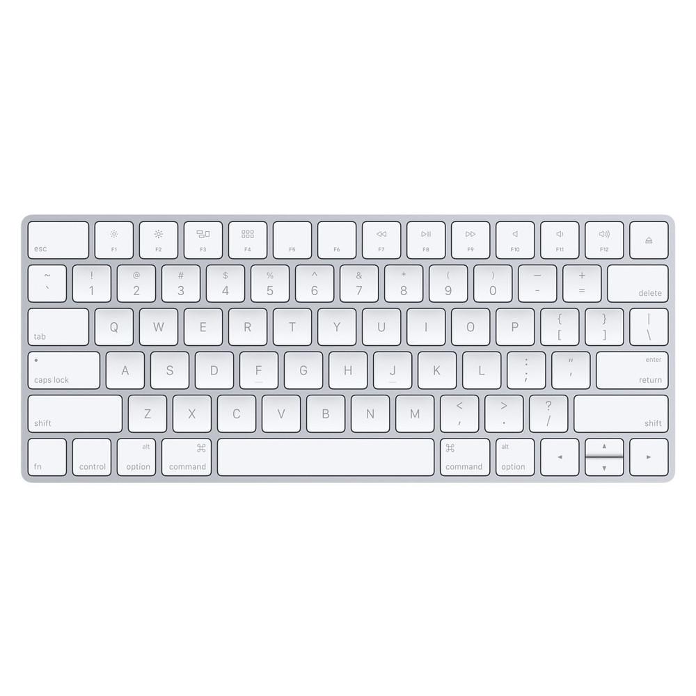Standard US English version fits the Apple Magic Keyboard