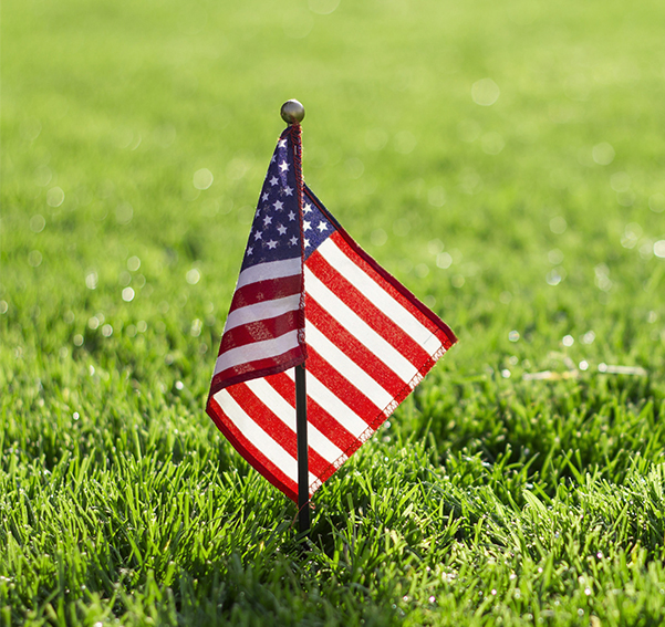 The star spangled banner placed in the grass in the park