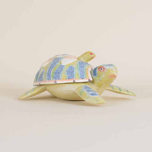 Turtle Container