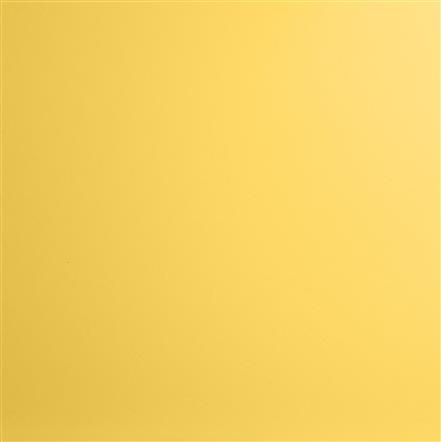 Mustard Yellow Kydex Color