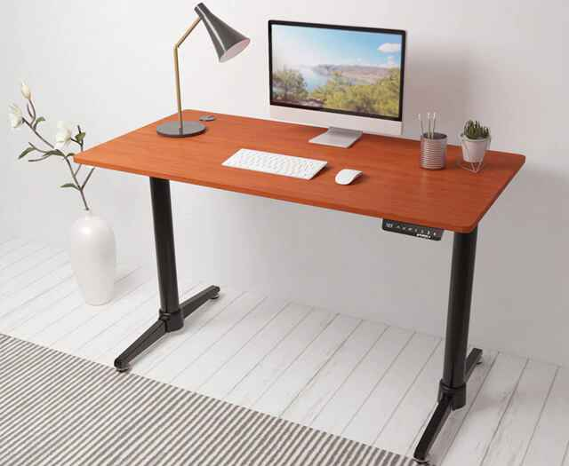 Eureka Ergonomic® Electric Height Adjustable Desk - Cherry