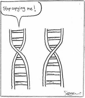 DNA Stop copying me