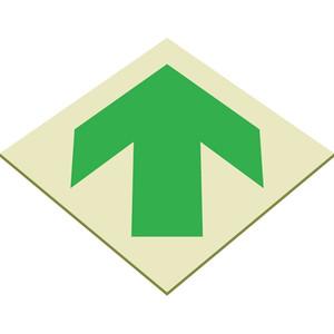 EcoGlo Glow in the Dark Arrow Sign, One-Sided, Unframed