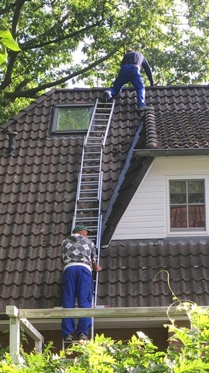 ladders-toomany.jpg