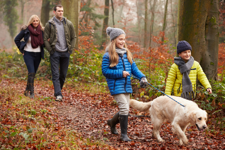 Autumn Safety Tips: Protect What Matters