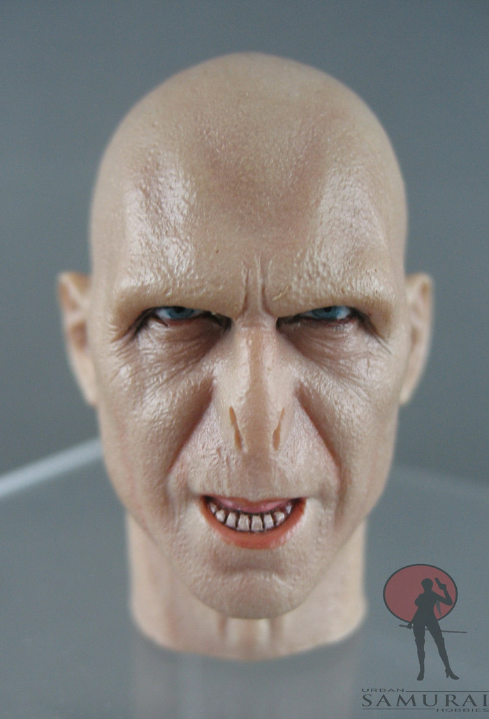 Other - Head - Voldermort