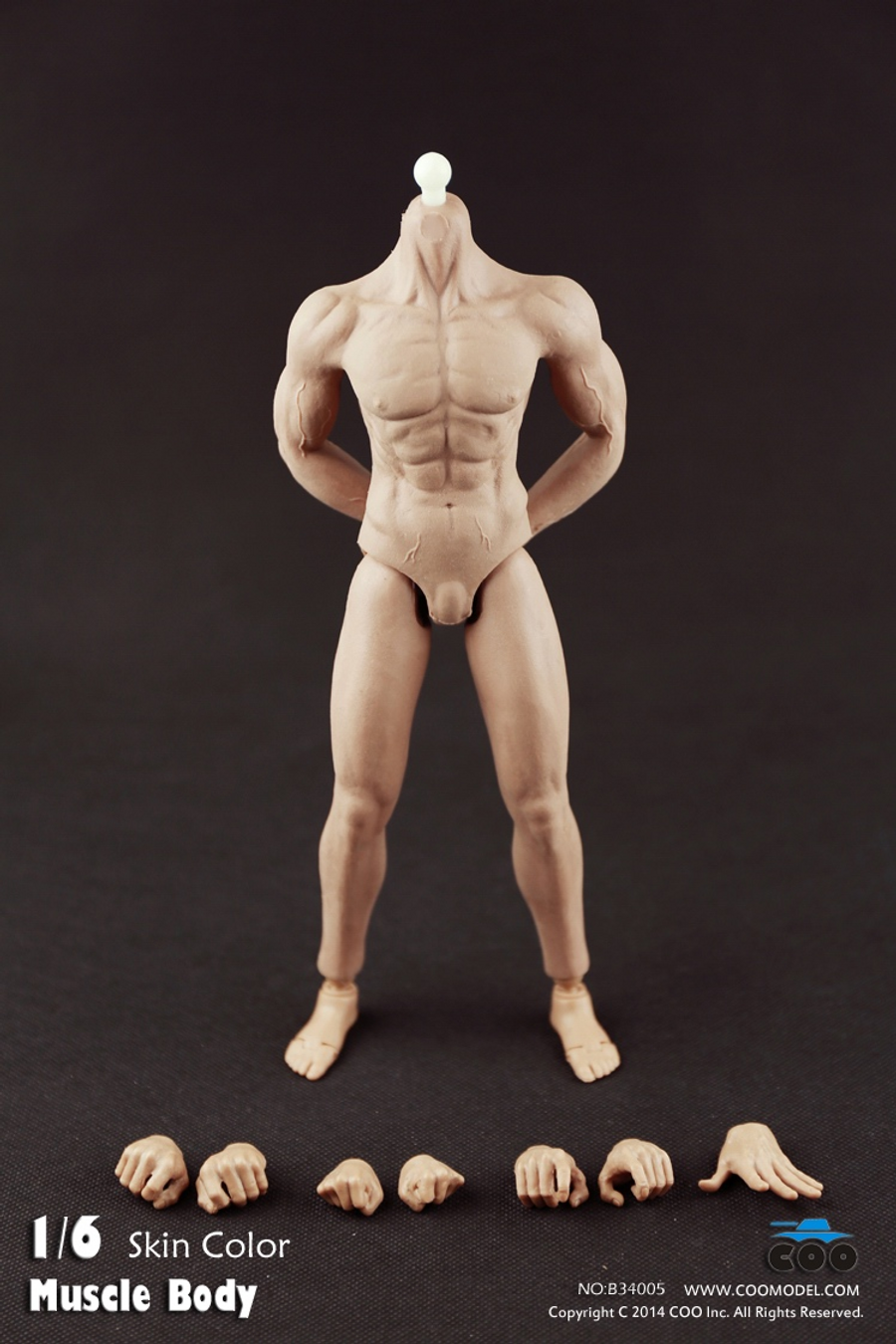 COO Model - Rubber Muscular Male Body CM-B34005
