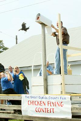 chicken-flying-contest-geaugafair2.jpg