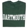 Adult Dartmouth T-shirt Blockword Short Sleeve
