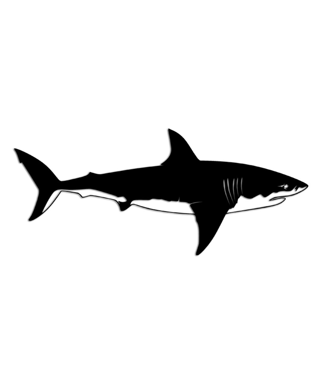 Brand-new Great White Shark Profile Sticker - Aftershock Decals CU33