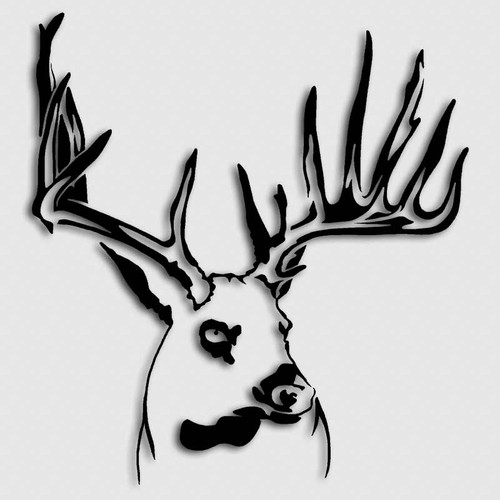Whitetail Timber Buck Hunting Decal