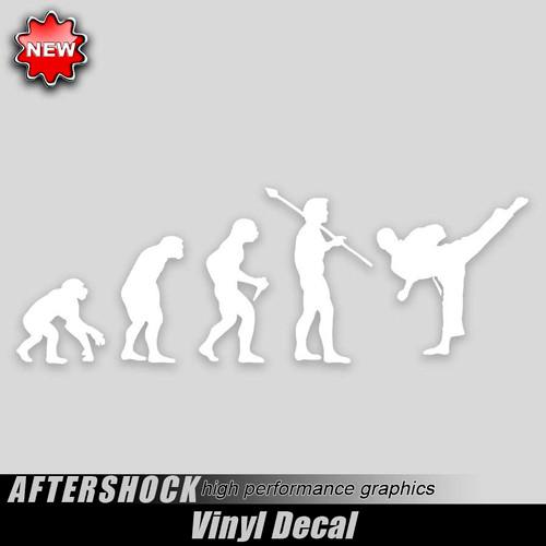 Karate Evolution Sticker