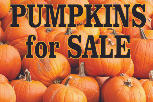 Pumpkins for Sale Colorful Banner that Will Bring In Customers.