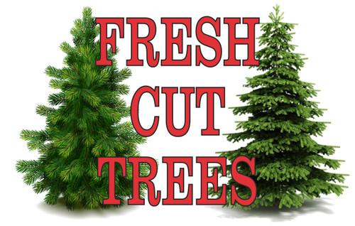 Fresh Cut Trees Banner.