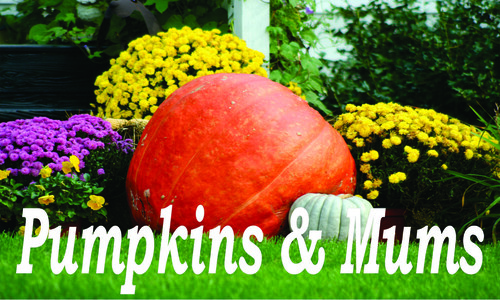 Pumpkins & Mums Banner is great for farmers markets.