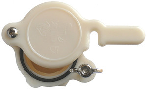 Nylon Honey Gate 38mm - Cream
