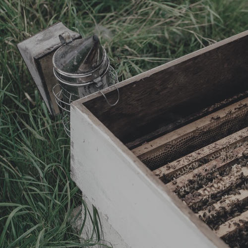 Beekeeping Supplies NZ | Ceracell