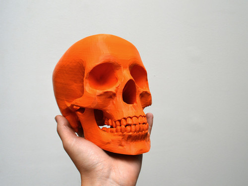 To Make or not to Make, Simplified human skull