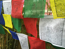 Extra Large Guru Rinpoche Prayer flags 27 feet long