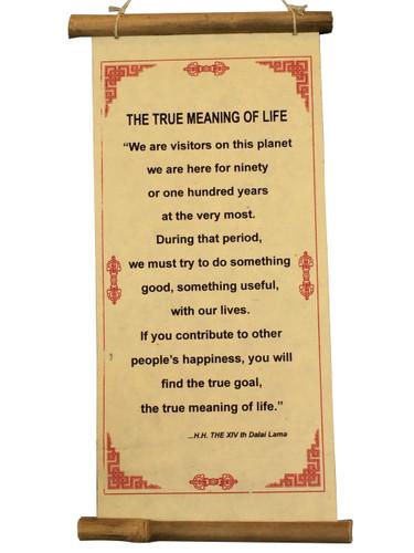 Dalai Lama Quate True Meaning of Life