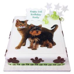 Paw Print Photo Cake