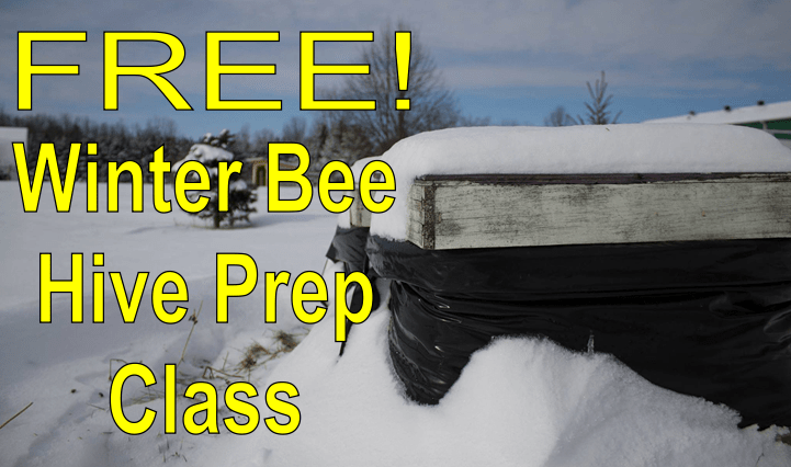 Free Winter Bee Hive Prep Class
