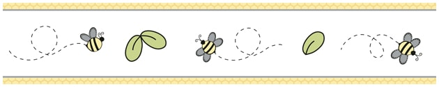 Package Honey Bees Border