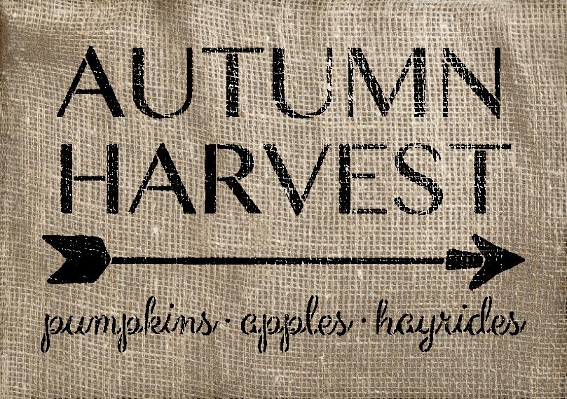 "Autumn Harvest - Arrow - Word Art Stencil - 24"" x 16"" - STCL1996_4 - by StudioR12"