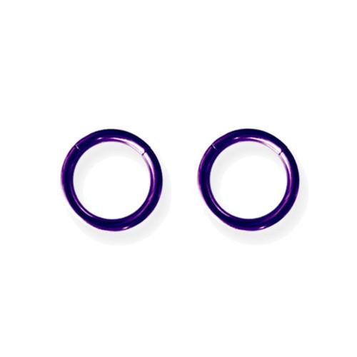 """Lex and Lu Pair of Titanium Seamless Captive 14 Gauge 3/8"""" Dia Purple"""