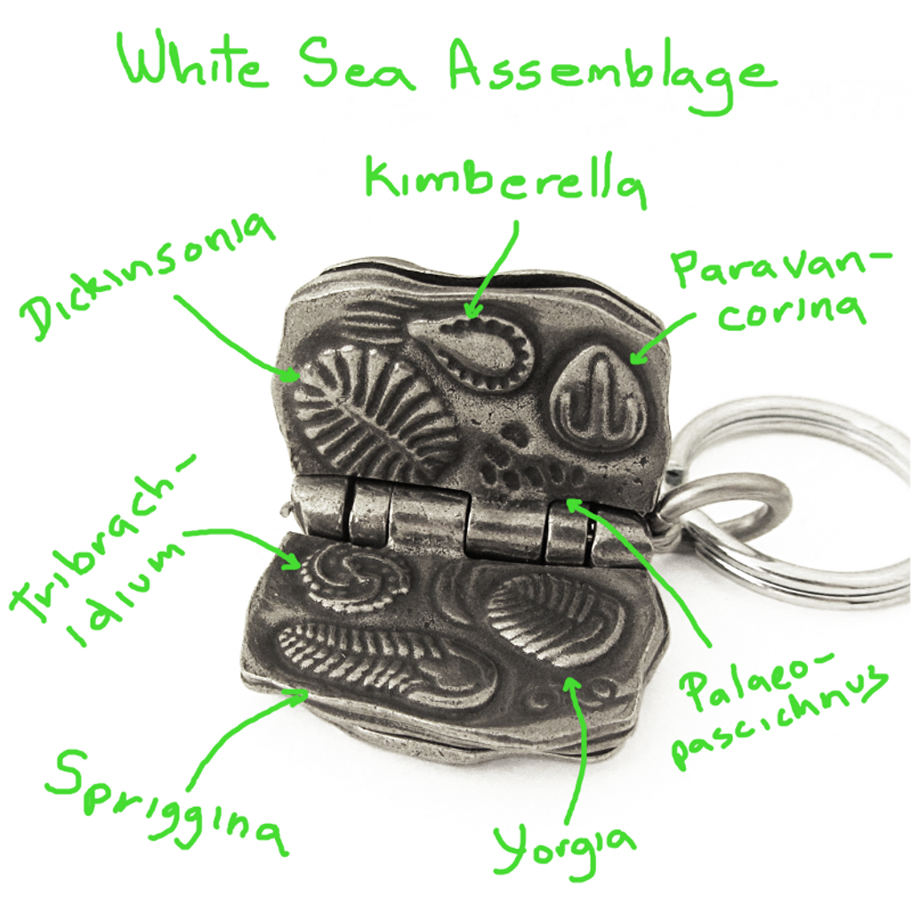 Rdiacaran Biota Keychain White Sea Assemblage with notes