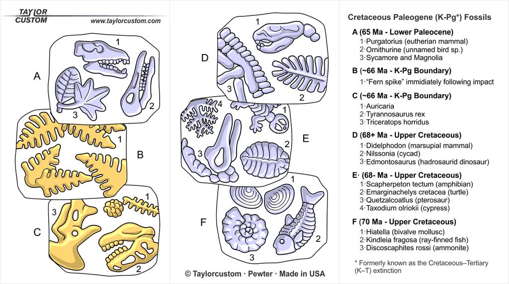 Cretaceous Paleogene Extinction keychain packaging