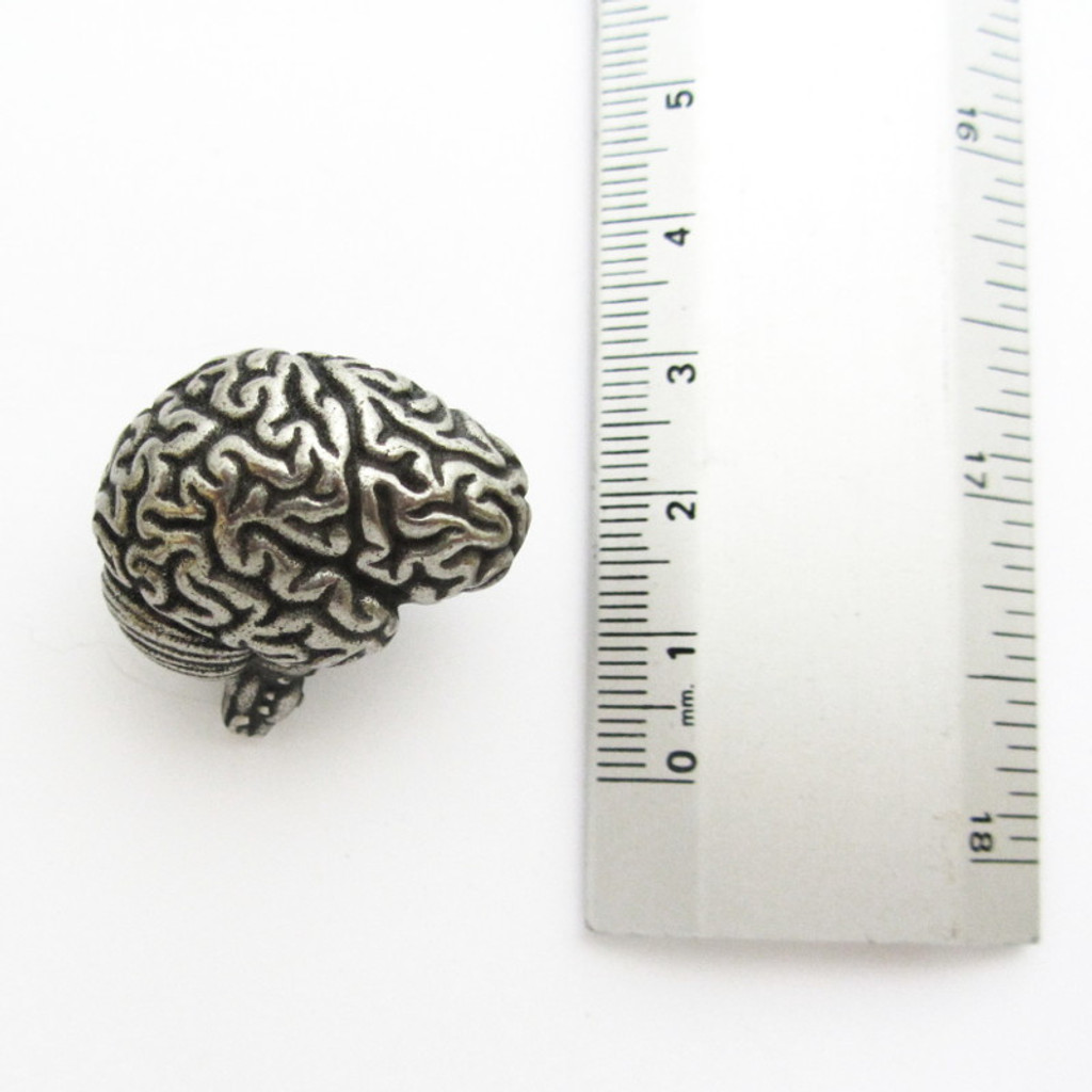 human brain anatomy USB flash drive