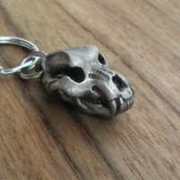 Cave Bear skull
