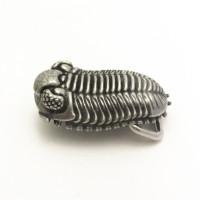 trilobite belt buckle