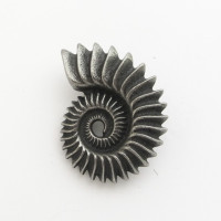 Helicoprion tooth whorl pin