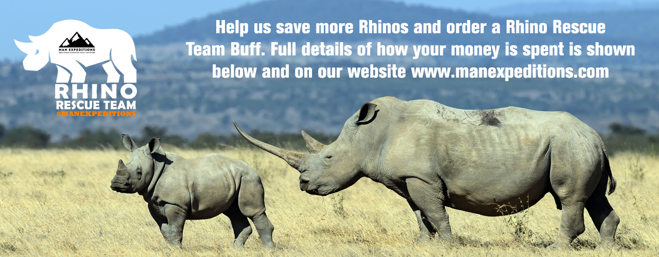 rhino-web.jpg