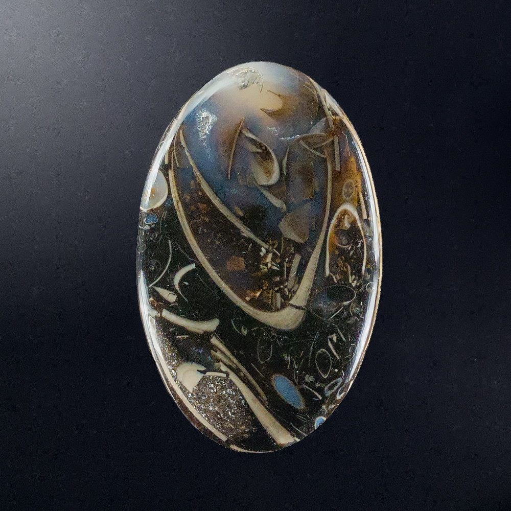 Fascinating Colus Turritella Agate Cabochon, 54x34x6mm, 90.65 cts
