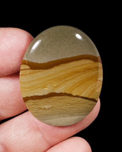 Spectacular American Owyhee Picture Jasper Cabochon