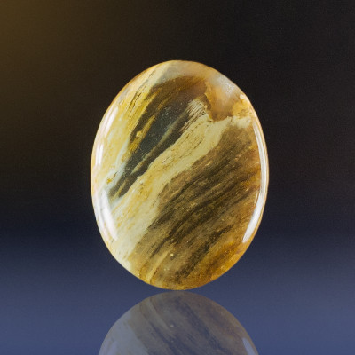 Petrified Wood Cabochon, 36x26x6mm, 34 cts
