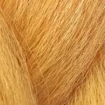 colorchart-hkk-apricot.jpg