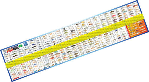 AFN Maxi Fish ID guide measure mat