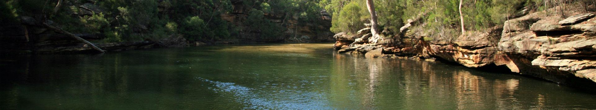 daiwa-river-fishing-rods.jpg