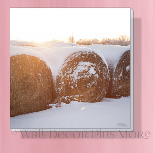 Bales In Snow 12x12 Photo Art Canvas Print Wall Hanging Farmhouse Decor