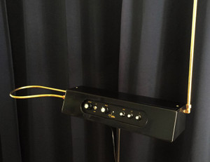 Hobbs Theremin Special (hand built by Charles Hobbs)
