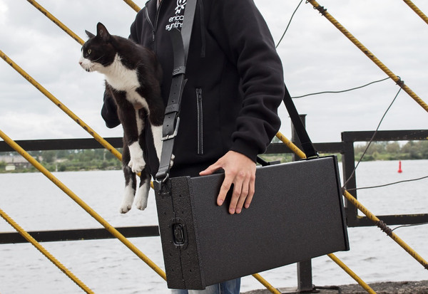 *Cat not included