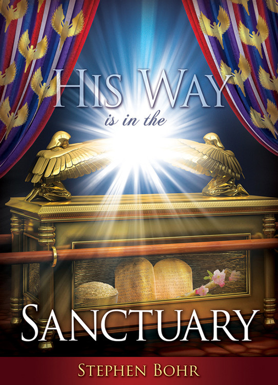 His Way Is In The Sanctuary #19 MP3D - Digital Download